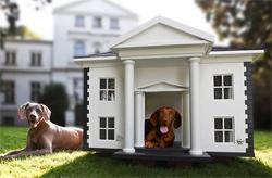 Изготовление оригинальных домиков для собак