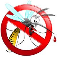 Изготовление одежды защищающей от комаров