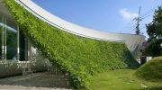 Экологический дом — какие стены соответствуют стандартам экологических перегородок