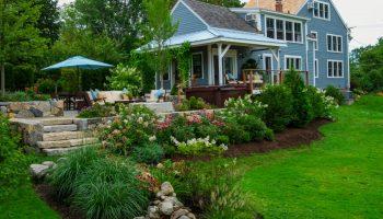 Озеленение дачи и загородного дома без ошибок и лишних затрат