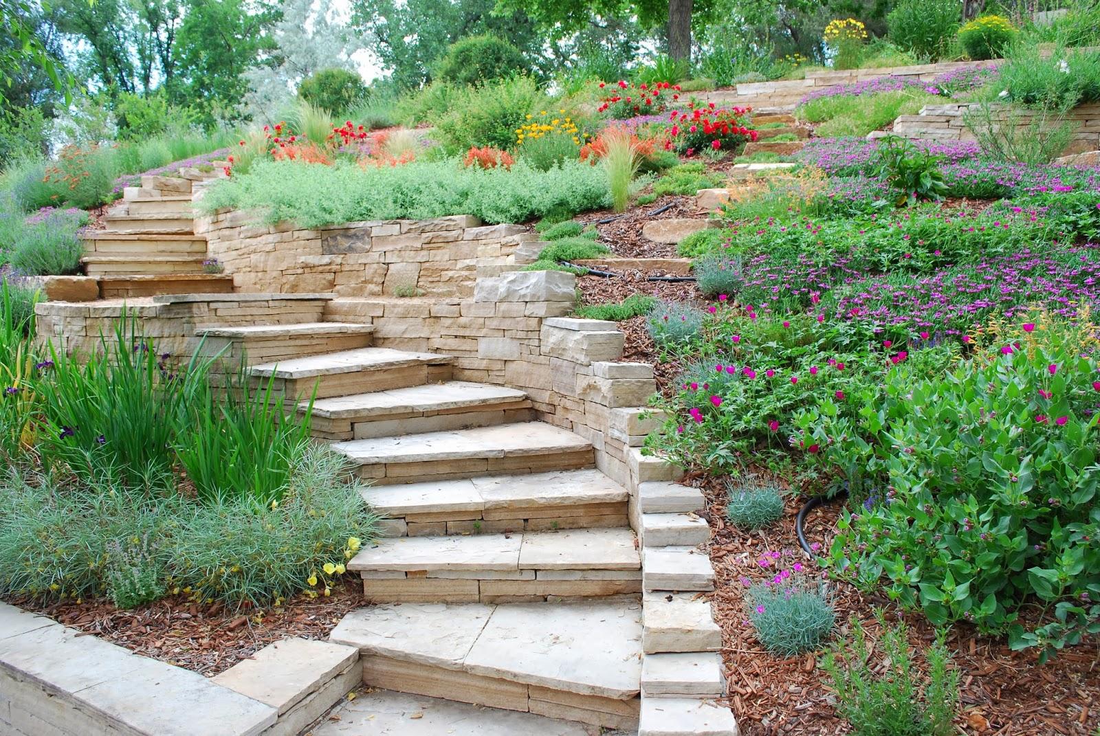 садовые лестницы на дачном участке фото каким