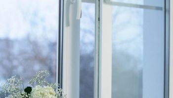 Как не поморозить цветы при открывании окон для проветривания комнат
