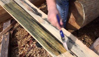 Чем пропитывать древесину чтобы она не гнила