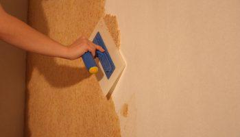 Как правильно наносить жидкие обои на стены самостоятельно