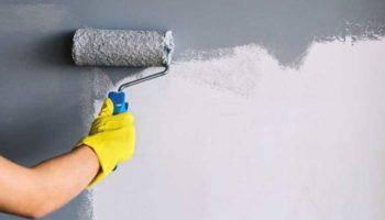Самые досадные ошибки новичков в покраске стен