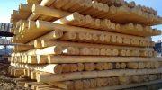 Что делать, если купили на стройку сырой лес