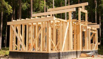 Какой тип дома можно построить за 8 недель