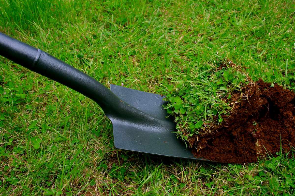 Особенности выбора лопаты для огорода