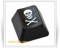 Как защитить свои инфопродукты от пиратов в интернете