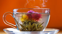 Бизнес на продаже цветущего чая