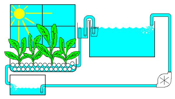 схема подключения фитофильтра для аквариума