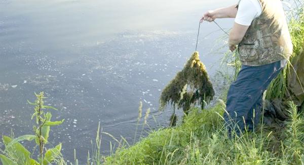 расчистка места для рыбалки от водорослей