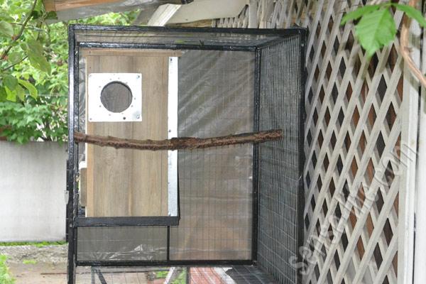 гнездовой домик для попугаев жако